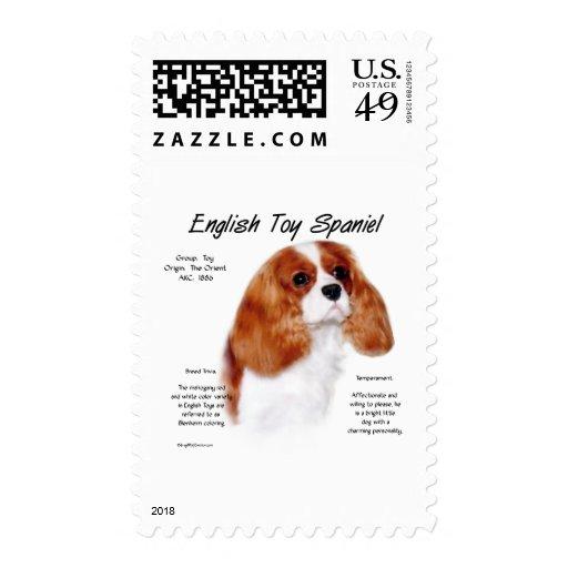 Diseño de la historia del perro de aguas de envio