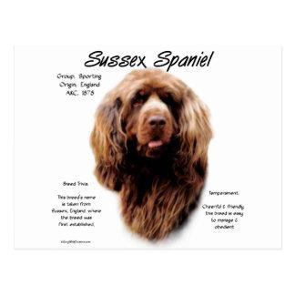 Diseño de la historia del perro de aguas de Sussex Tarjeta Postal