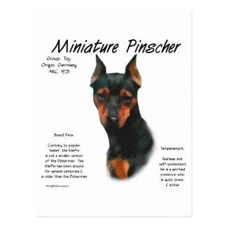 Diseño de la historia del Pinscher miniatura negr Tarjetas Postales
