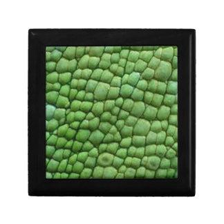 Diseño de la piel del camaleón caja de joyas