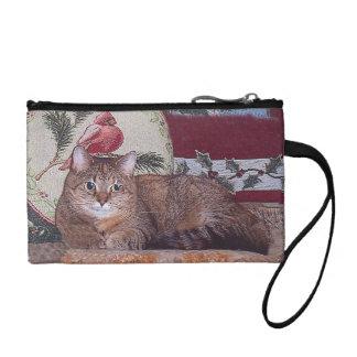 Diseño de la primavera del gatito del invierno que