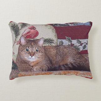 Diseño de la primavera del gatito del invierno que cojín decorativo