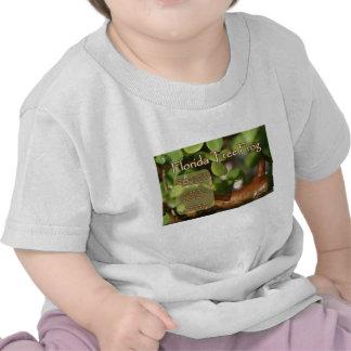 Diseño de la rana arbórea de la Florida con el Camisetas