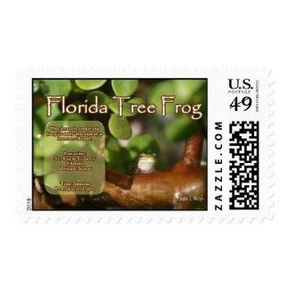 Diseño de la rana arbórea de la Florida con el Envio