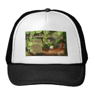 Diseño de la rana arbórea de la Florida con el tex Gorros