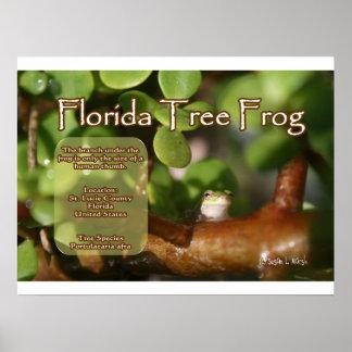 Diseño de la rana arbórea de la Florida con el tex Posters