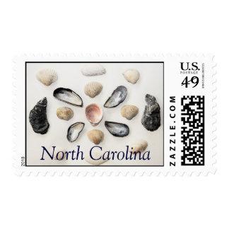 Diseño de las cáscaras del mar sello