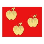 Diseño de las manzanas postal