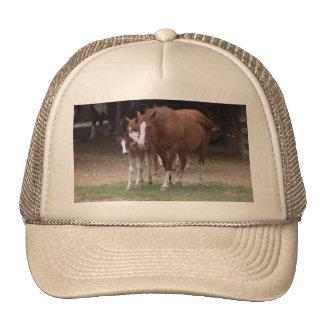 Diseño de los caballos gorra