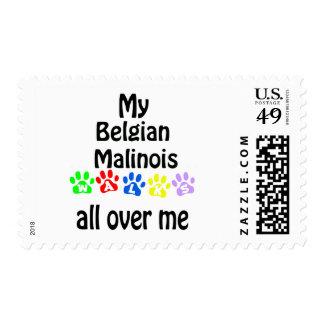 Diseño de los paseos de Malinois del belga Estampillas