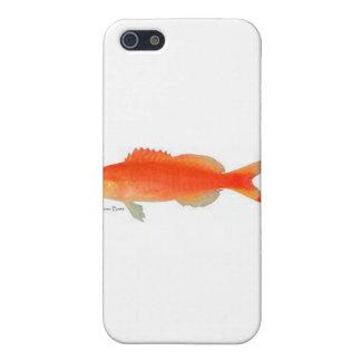 Diseño de los pescados del oro iPhone 5 carcasa
