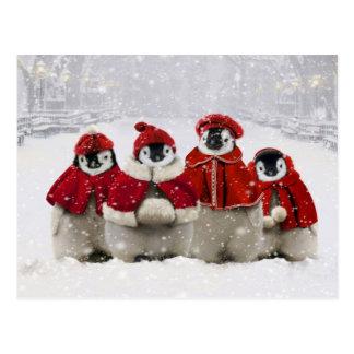 Diseño de los pingüinos del navidad rojo y blanco tarjetas postales