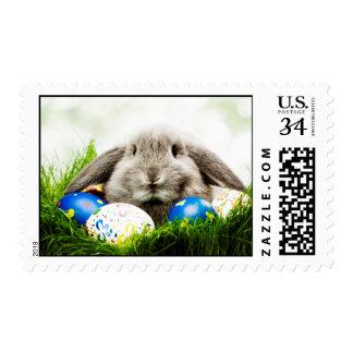 Diseño de lúpulo del conejo de conejito de pascua timbres postales