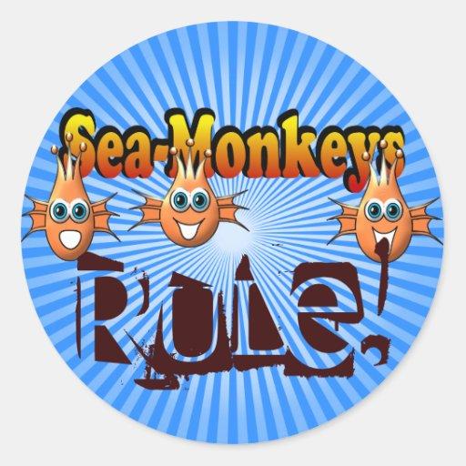 Diseño de Monkees de los monos del mar Etiqueta Redonda