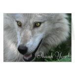 Diseño del Animal-amante del lobo gris de la fauna Tarjeton
