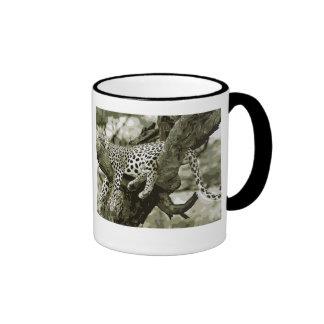 Diseño del arte del leopardo. El gato lindo el Taza De Dos Colores