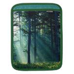 Diseño del bosque funda para iPads