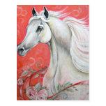 Diseño del caballo blanco postal