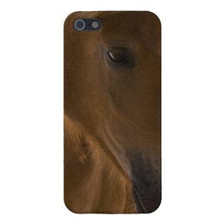 Diseño del caballo de la castaña iPhone 5 protector