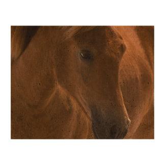 Diseño del caballo de la castaña impresión en corcho
