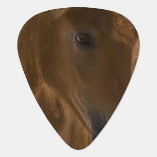 Diseño del caballo de la castaña púa de guitarra