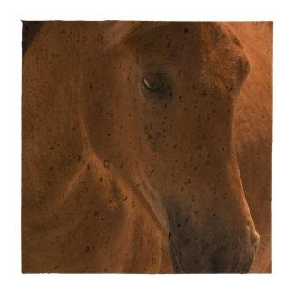 Diseño del caballo de la castaña posavasos