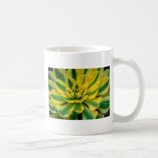 Diseño del cactus taza
