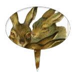 Diseño del conejo