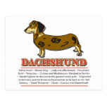 Diseño del Dachshund Tarjetas Postales