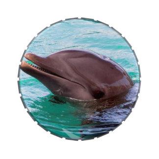 Diseño del delfín frascos de caramelos