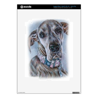 Diseño del dibujo del perro de great dane iPad 3 skins