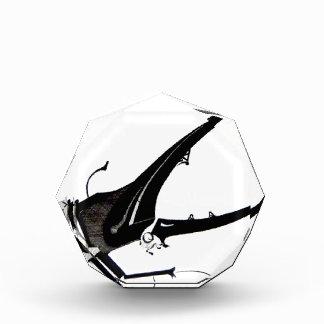 Diseño del escarabajo blanco y negro