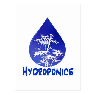 Diseño del hidrocultivo, descenso azul y árbol postales