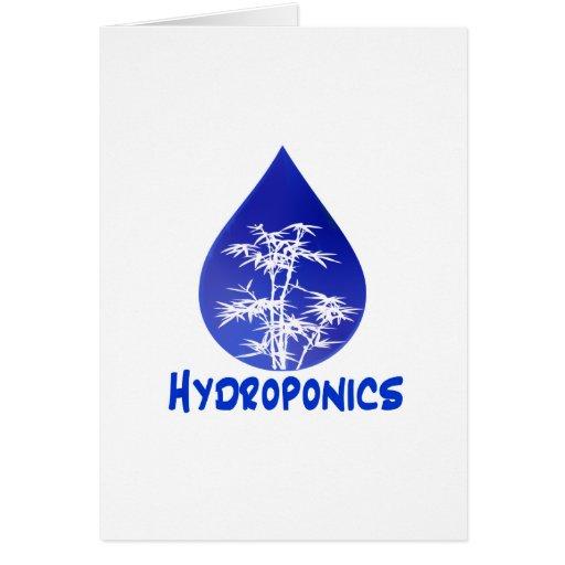 Diseño del hidrocultivo, descenso azul y árbol tarjeta pequeña