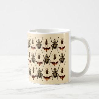 Diseño del insecto, escarabajos de Goliat y Taza De Café