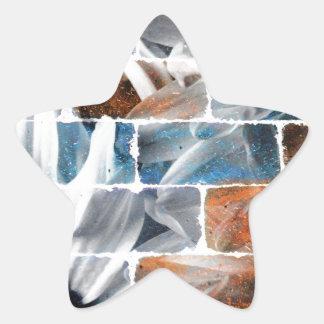 Diseño del ladrillo de la margarita pegatina en forma de estrella