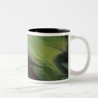 Diseño del modelo de la pluma del loro taza dos tonos