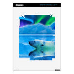Diseño del oso para el animal y los iPad 3 pegatinas skins