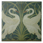 """Diseño del papel pintado del """"cisne, de la precipi azulejo cuadrado grande"""