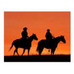 Diseño del paseo del vaquero de la puesta del sol postal