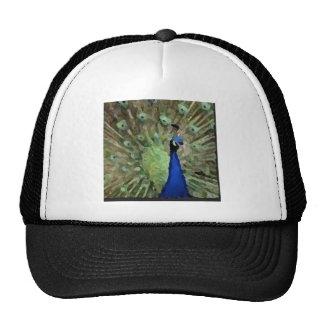 Diseño del pavo real gorras de camionero