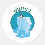 diseño del pingüino del antartica etiqueta redonda