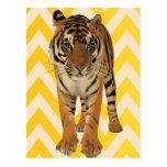 Diseño del regalo del arte del tigre postal