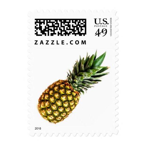 Diseño del sello de la piña