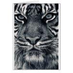 diseño del tigre felicitación