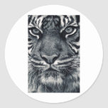diseño del tigre pegatina