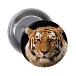 Diseño del tigre pins