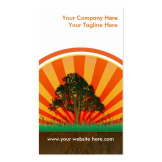 diseño del verano tarjetas de visita