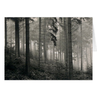 Diseño denso de la foto del bosque tarjeta de felicitación