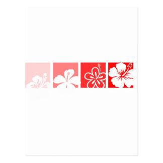 Diseño en colores pastel del hibisco rojo tarjetas postales